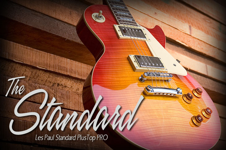 Les Paul Standard PlusTop PRO Feature