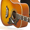 Enter to win a Dove PRO Acoustic/Electric